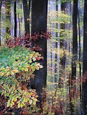 Glorious Autumn ii