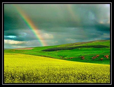 Colourful Lanscape
