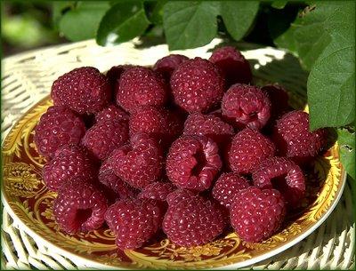 Raspberry(3)