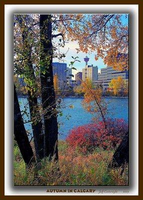 Calgary Fall Colours!