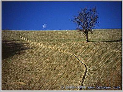 campagne di Urbino