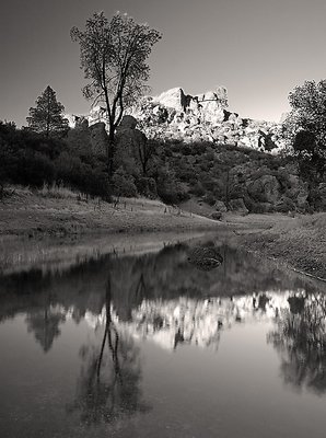 Pinnacles BW