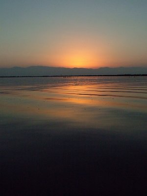 sunset in Anzali  lagoon