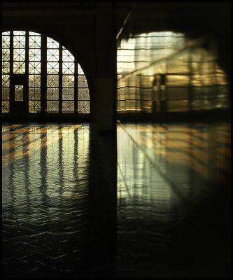 Ellis Island: Duality