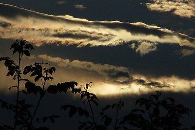 Early morning Thunder Sunrise