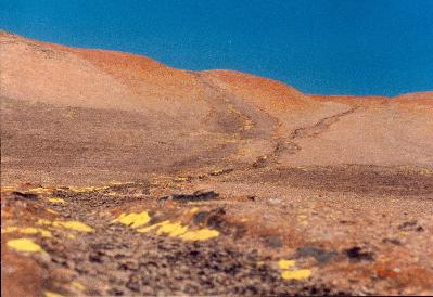 natural rock slide