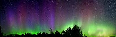 Algonquin Auroras