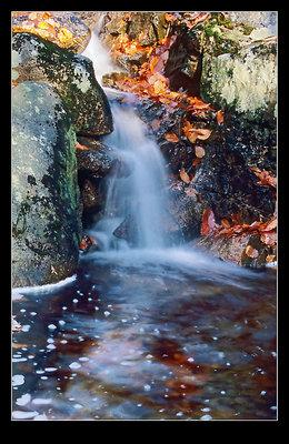 Ambler falls (film)