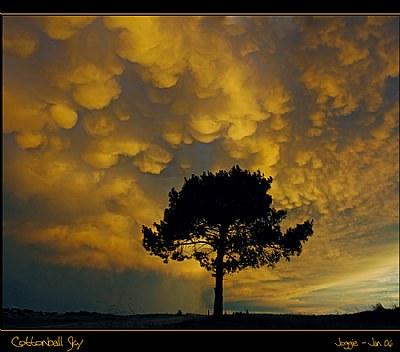 Cottonball Sky