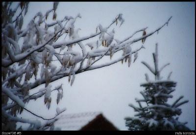 Snow'06 #5