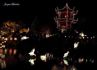 chinese lanterns 40