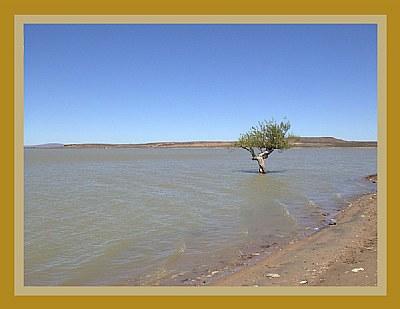 Laguna Carrilaufquen