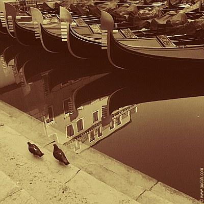 Two pigeons & Gondolas