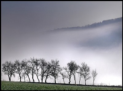 days | of | fog | #2 -