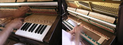 piano fixing!