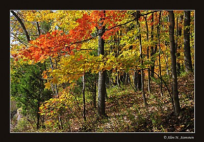 Ralph Stover State Park  (d2838)