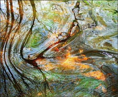 River Mosaic