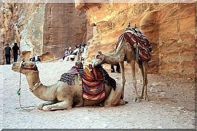 My journey to Jordan (1.)