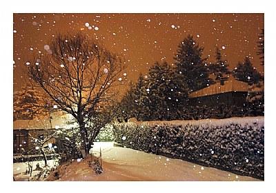 ***snowy postcard***