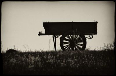 Dark Cart