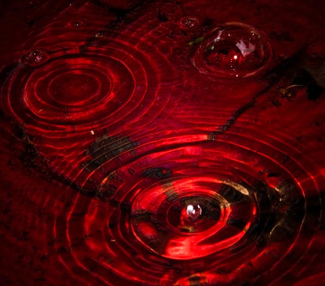 Дождь из крови картинки