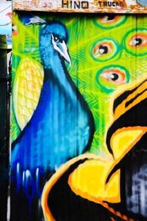 Pea cock graffiti