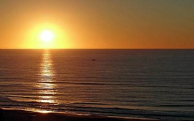New Day Sun