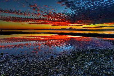 Popcorn Red Sunset