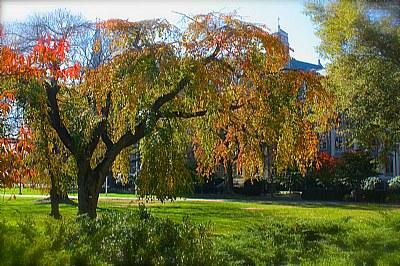 Autumn at Georgetown University