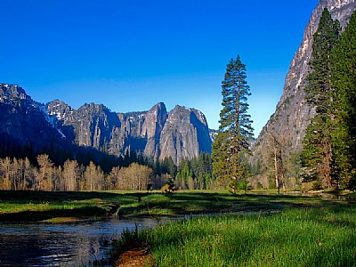 A quiet valley, Yosemite