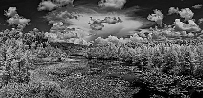 BW Ir..Clouds By The Stream