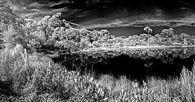 Pond in BW Ir