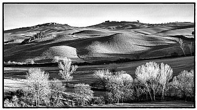 Colline (Hills)
