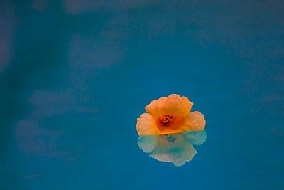 Floating thru life