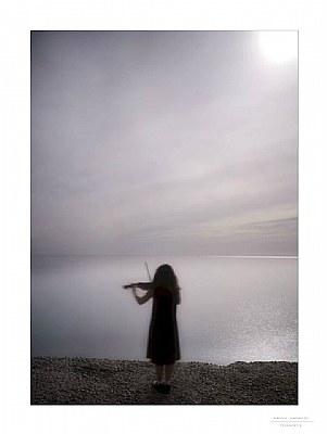 Violinist...