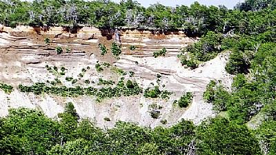 Green & Geology