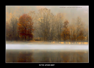 In the Autumn Mist