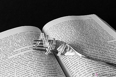 """""""I libri pesano tanto: eppure, chi se ne ciba e se li mette in corpo, vive tra le nuvole""""  (Luigi Pirandello)"""