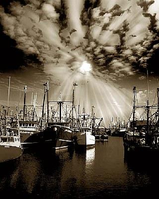 death of a fishing fleet