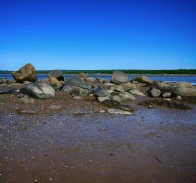 Coast of the island Small Vertlyagina Luda.