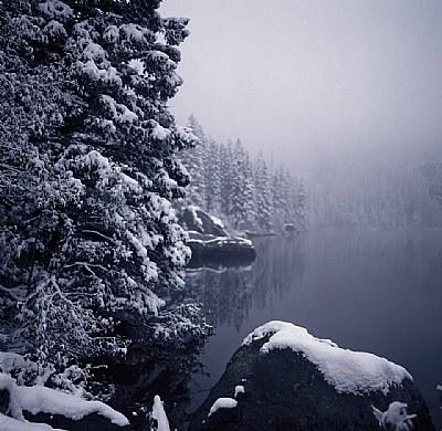 Misty Bear Lake