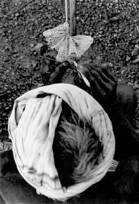 knitting, a fishing net.